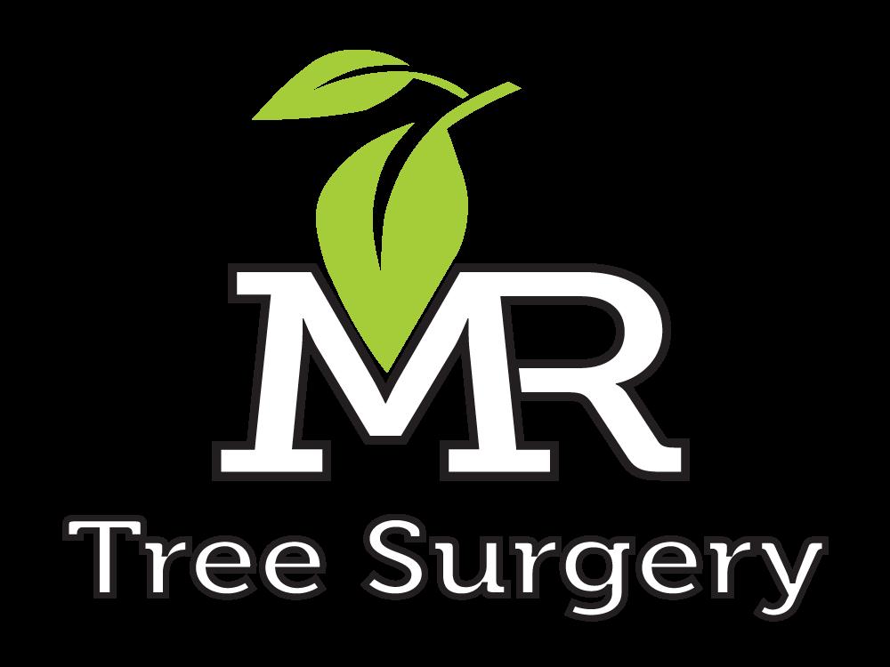Mr Tree Surgery
